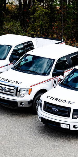 Windsor Ford Small Business Vehicles